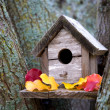 Cozy Birdhouse - Foto Stock