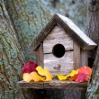 Cozy Birdhouse - Stockfoto