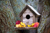 Cozy Birdhouse — Stock Photo