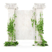 Vertical antiquity billboard covered with ivy — Stock Photo