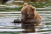 Tomar um banho — Fotografia Stock