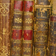 Stock Photo: French revolution old books