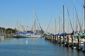 Sailboats at dock — Stock Photo