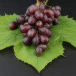 Grapes — Stock Photo