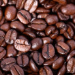 Coffee grains close up — Stock Photo