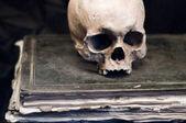 上一本老书的头骨 — 图库照片