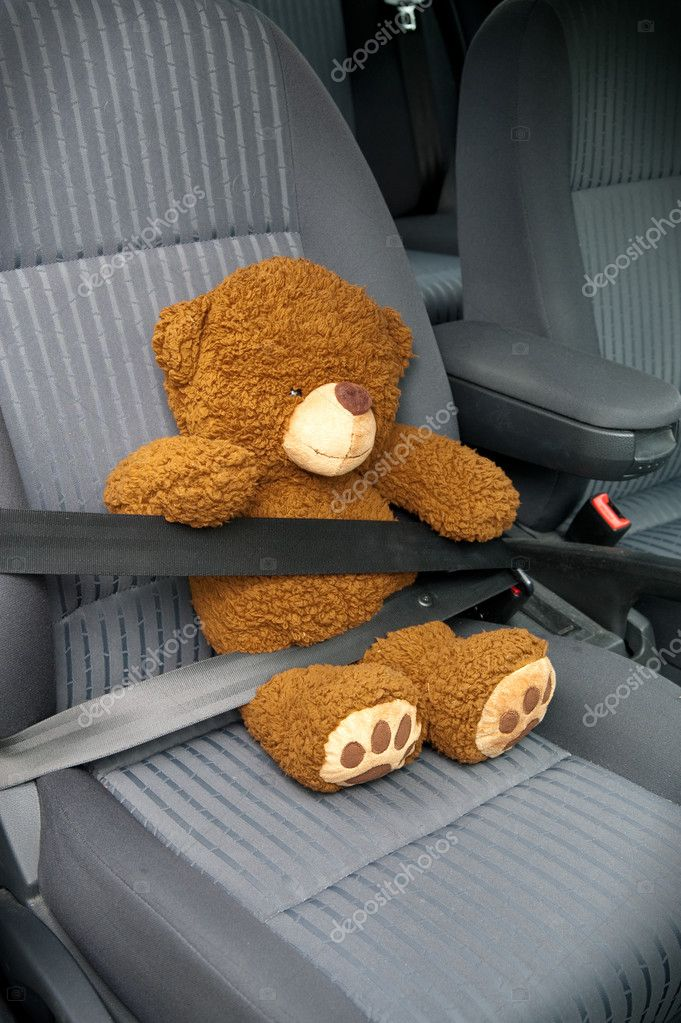 Teddy with seat belt in a car  Stock Photo #4587350