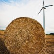Stock Photo: haybale and wind turbine