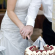 Stock Photo: Cutting Wedding Cake