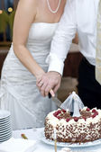 Cutting the Wedding Cake — Stock Photo