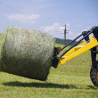 Working with a Hay Bale — Foto Stock