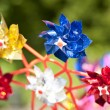 Stock Photo: Colorful Pinwheel