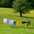 Clothesline in a Spring Field - Stock Photo