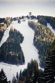 Skiing Slope — Photo