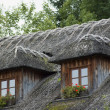 Thatched roof — Stockfoto