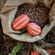 Royalty-Free Stock Photo: Cocoa Beans and Cocoa Fruits