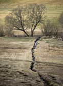 Streamlet at end of Winter — Stock Photo