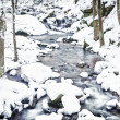 Winter Stream - Stock Photo