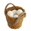 All eggs in same basket — Stock Photo