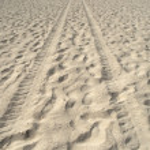 kum üzerinde lastik izleri — Stok fotoğraf