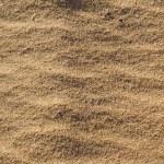 Sand texture — Stock Photo #4761987