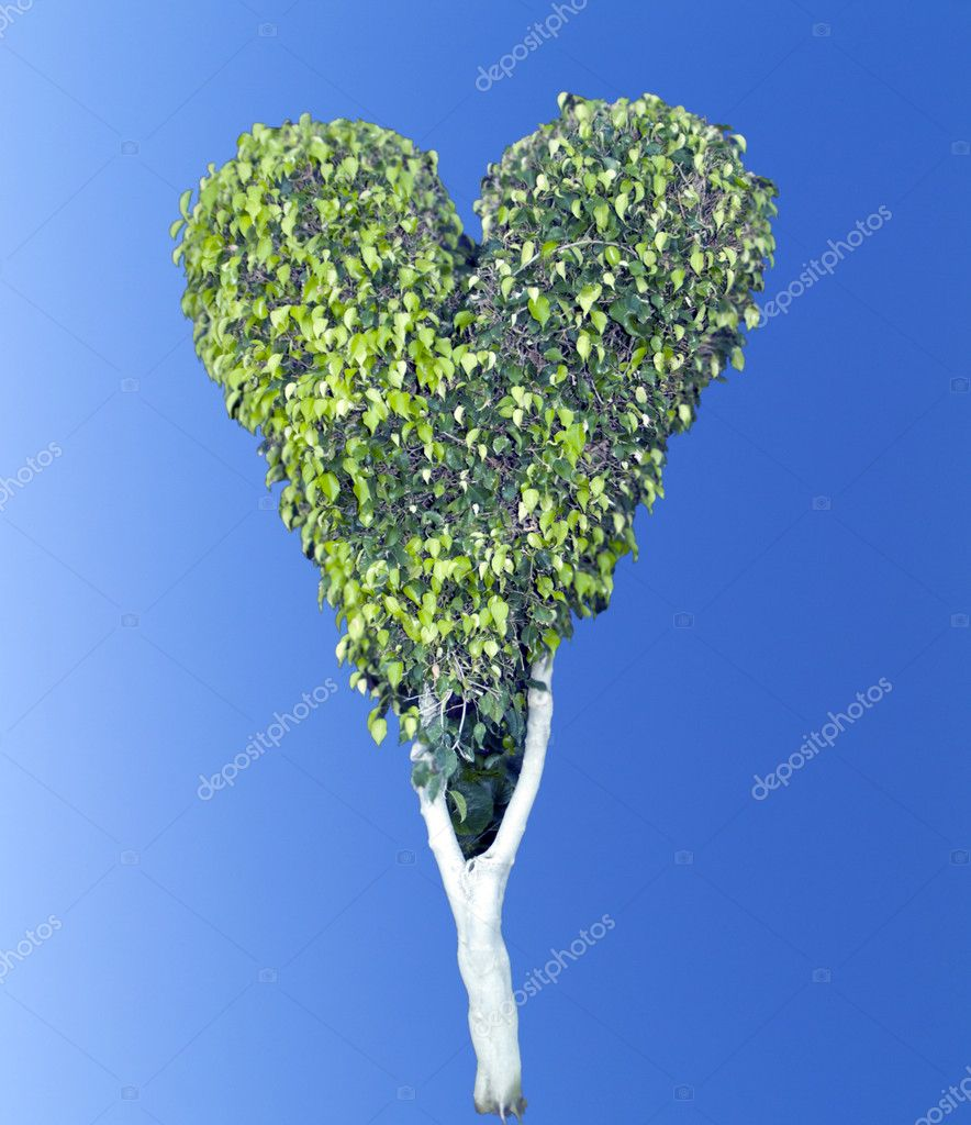 Heart tree over blue sky — Stock Photo #4761854