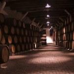 Vine cellar — Stock Photo #4898060
