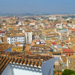 Red roofs of Granada, Spain — Stock Photo