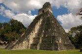 Mayan temple, Tikal — Stock Photo