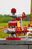 Valves for oil pump — Stock Photo