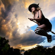 Stock Photo: Flying witch on broomstick