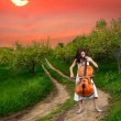 Beautiful girl playing the cello - Stock Photo