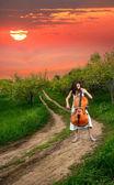 美丽的姑娘演奏大提琴 — 图库照片