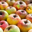 Apple with face — Stock Photo #5288157
