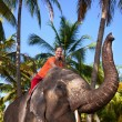 Woman riding elephant — Stock Photo