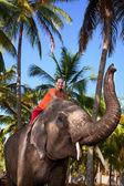 Woman riding elephant — Stock Photo
