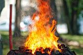 Flame in portable blacksmith II — Стоковое фото