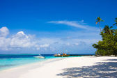 Maldives beach scene — Stock fotografie