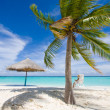 Beach. Palm. Relax. - Stock Photo