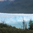 Perito Moreno glacier — Stock Photo #4573482