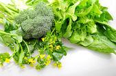 Flowering vegetable — Stock Photo