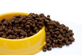 Pet food in yellow bowl — Stockfoto