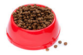 Pet food in red bowl — Stock Photo