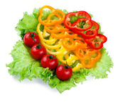 Mix of fresh vegetables, colored paprika, tomatoes on leaves of green salad — Stock Photo