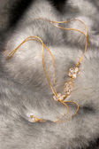 Beautiful chain on fur — 图库照片