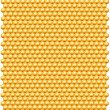 Bee honeycombs pattern - Stock Photo