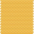 Bee honeycombs pattern — 图库照片