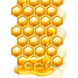 Bee honeycombs — Stockfoto