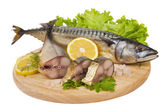 A composition with mackerel fish — Stock Photo