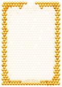 Rahmen mit bienen bienenwaben — Stockfoto
